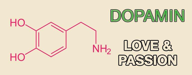 happiness-hormones-dopamine