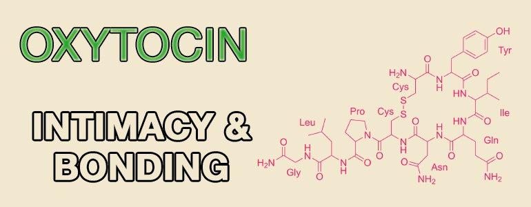 happiness-hormones-oxytocin