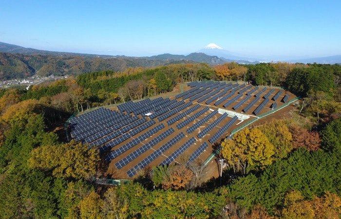positive-news-solar-panel-plant.jpg