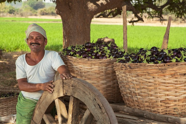 positive-news-october-indian-farm.jpg