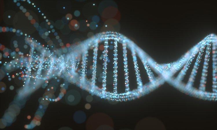 is-happiness-genetic-gene.jpg