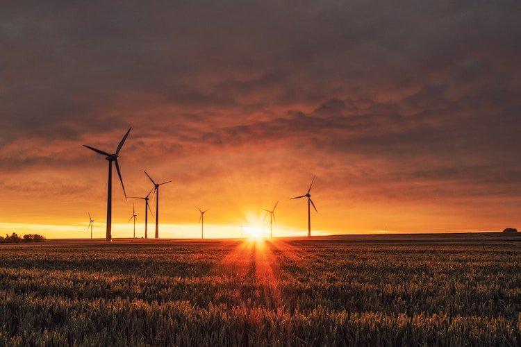 feel-good-positive-news-2019-wind-turbines.jpg