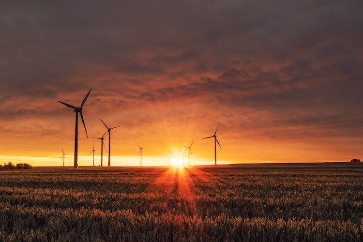 feel-good-positive-news-2019-wind-turbines.jpg.ebc5e41344f3575495c44bf071b1f7de.jpg