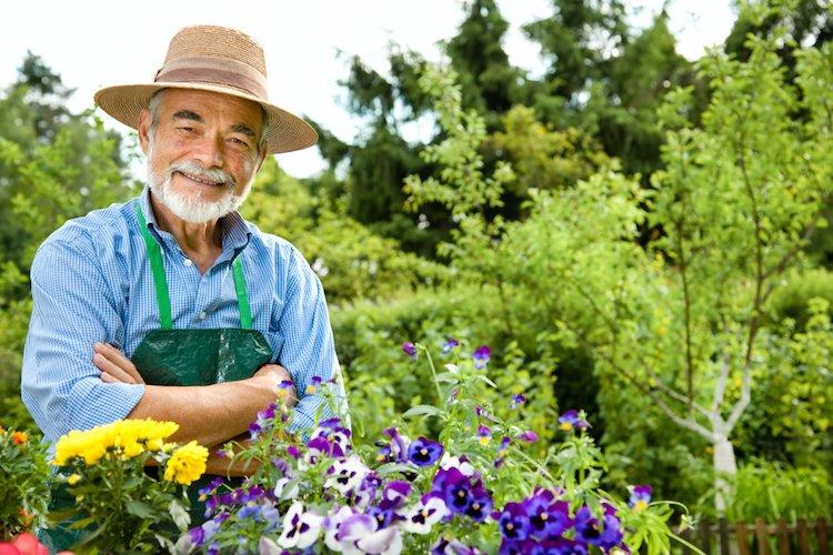 mental-health-gardening-purpose.jpg