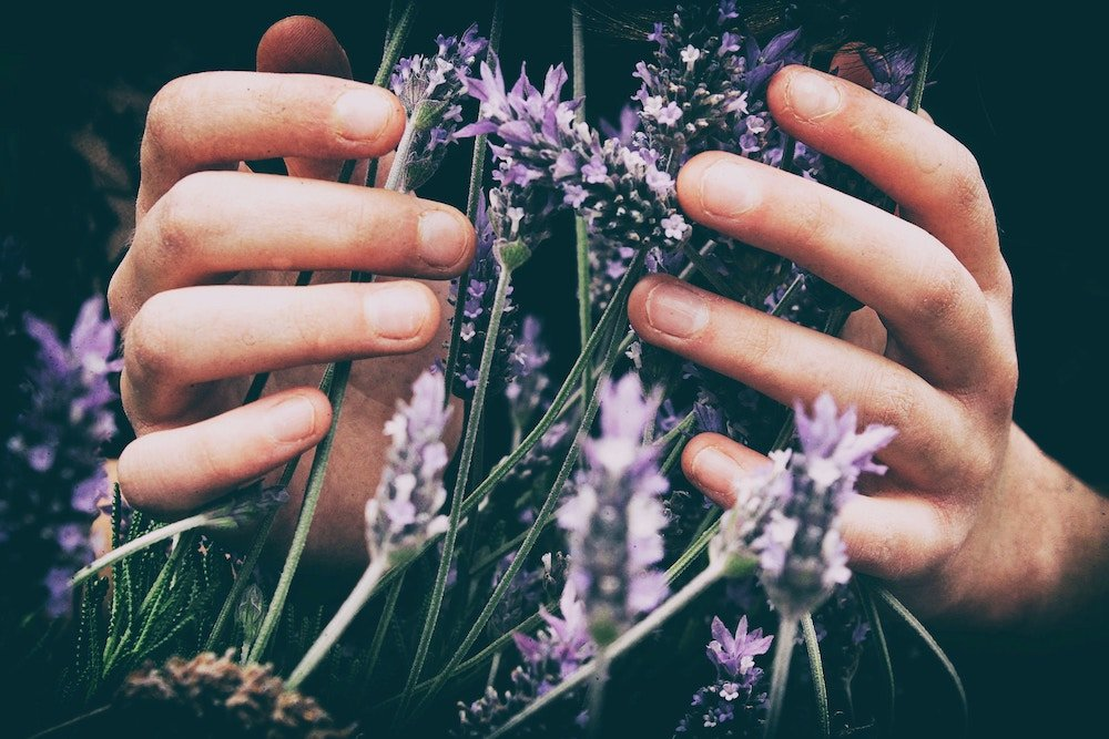 essential-oils-grief-lavendar.jpg