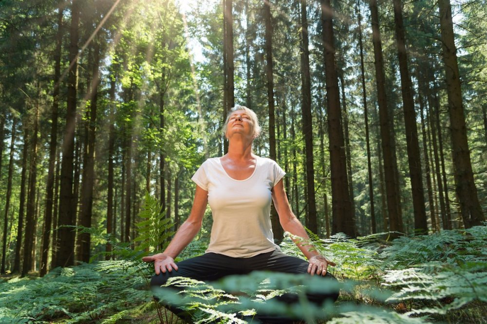 benefits-of-forest-bathing.jpg