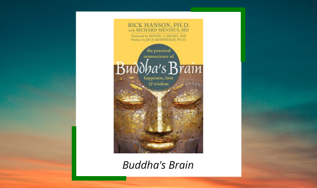 best-midfulness-books-wherever-you-go-buddhas-brain.png
