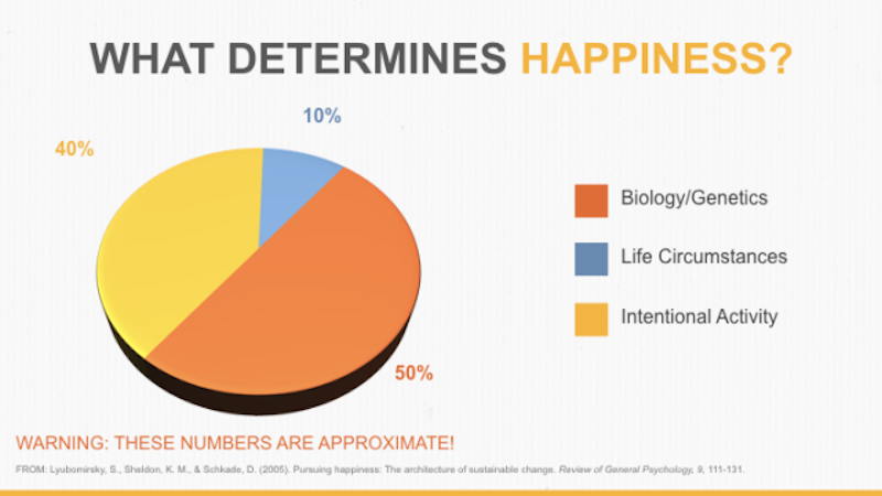 Happiness-pie-chart.png