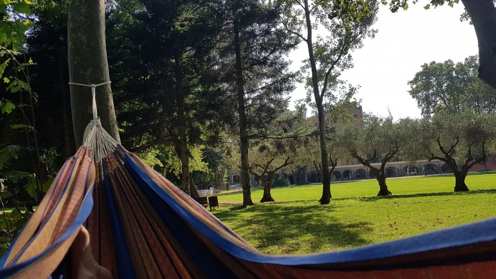 Chilling out in a hammock between the two nights of the ayahuasca experience