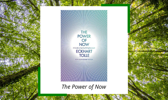 best-meditation-books-the-power-of-now.png